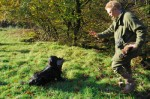 Why does my gundog struggle on retrieves?